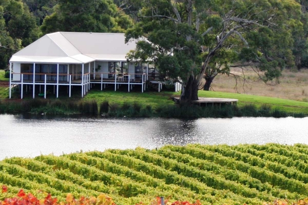 Craigie Knowe Vineyard Tasmania